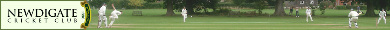 Newdigate Cricket Club